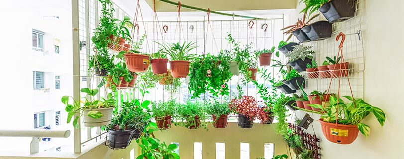 Fresh Summer Decor Ideas For Your Home